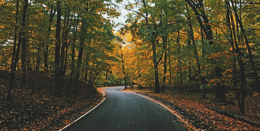 Image of winding road surrounded by autumn foliage.